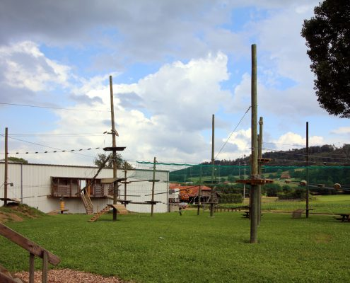 Using wooden poles, Payerneland in Switzerland